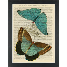 Blue Butterflys Vintage Botanical Drawing Dictionary Art Print