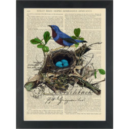 Blue bird in nest vintage botanical drawing Dictionary Art Print