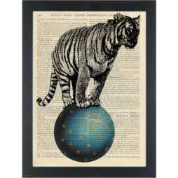 Circus tiger on a ball Dictionary Art Print