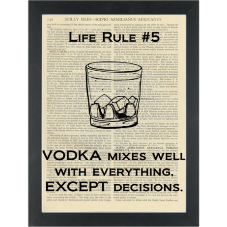 Funny alcolhol quote about vodka Dictionary Art Print