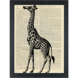 Giraffe vintage drawing Dictionary Art Print