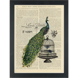 Peacock cage vintage post card Dictionary Art Print