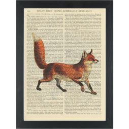 Redfox Vintage Drawing Dictionary Art Print