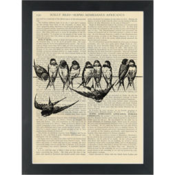 Birds on a wire vintage black and white botanical drawing Dictionary Art Print