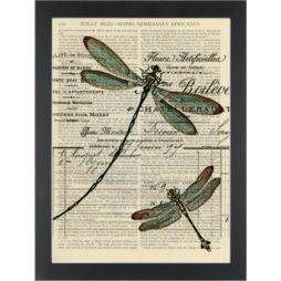 Dragonfly vintage drawing blue Dictionary Art Print